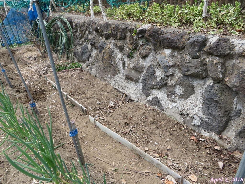 画像7(アーチ支柱、竹棒の片付け)