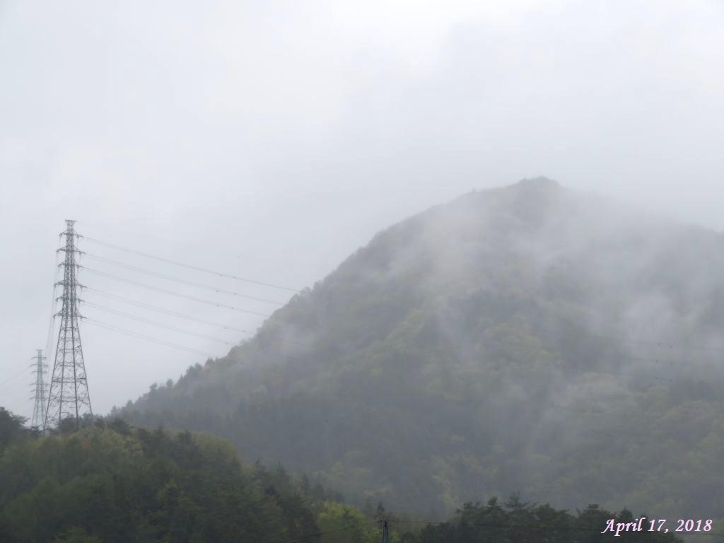 画像5(霧雨に煙る近くの山)
