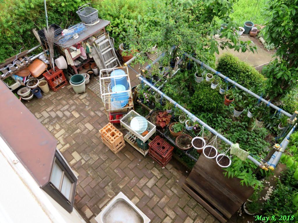 画像20(壁際を空けた庭)