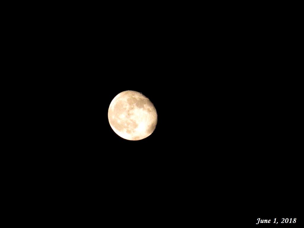 画像10(昨夜の月)