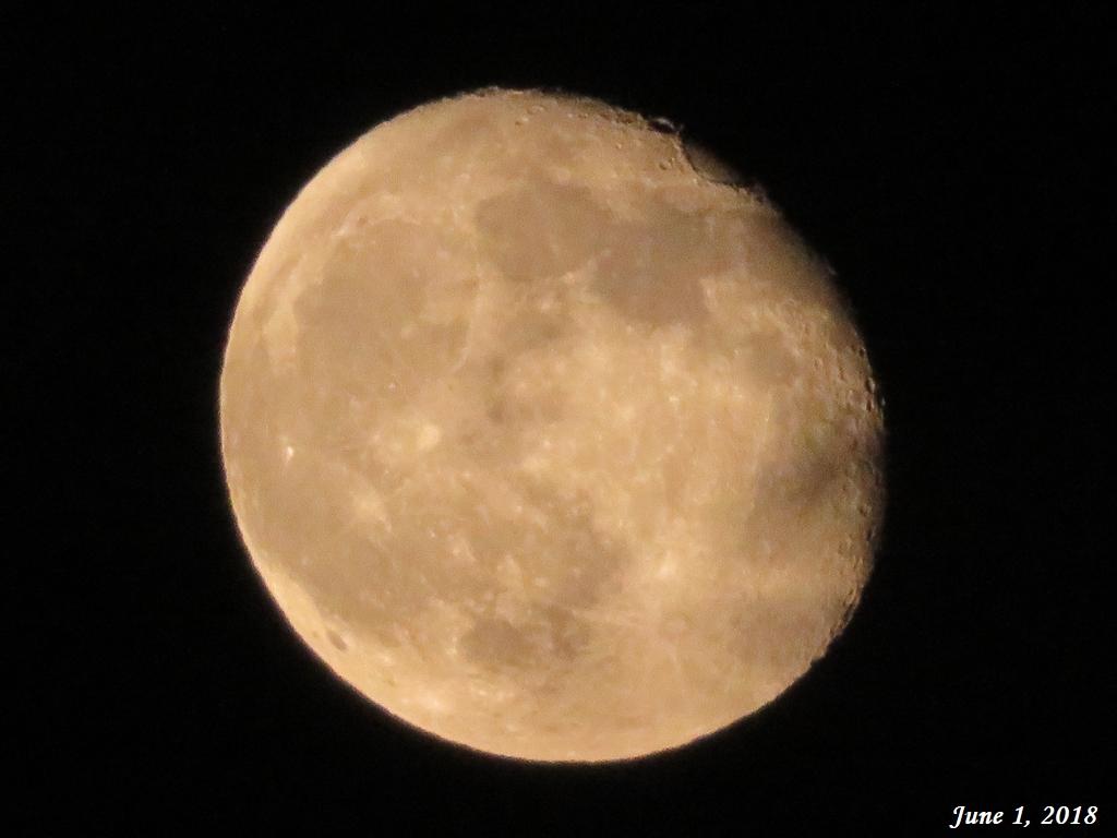 画像11(昨夜の月)