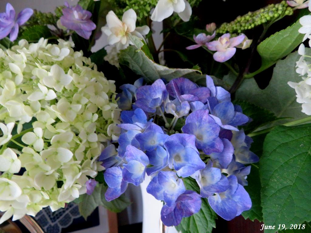 画像2(紫陽花の切り花)