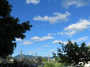 画像2(梅雨明けの空)