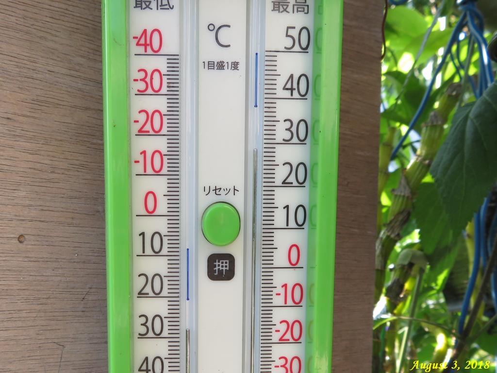 画像16(温度計)