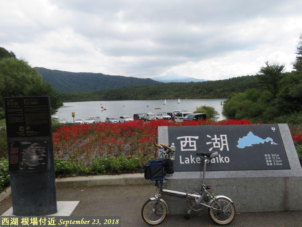 画像9(西湖 根場付近)
