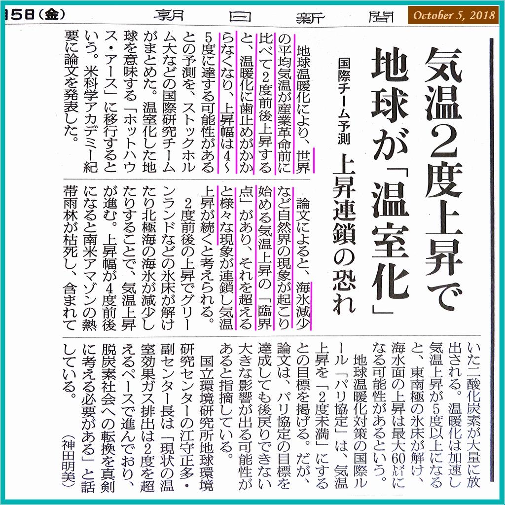 画像11(新聞記事)