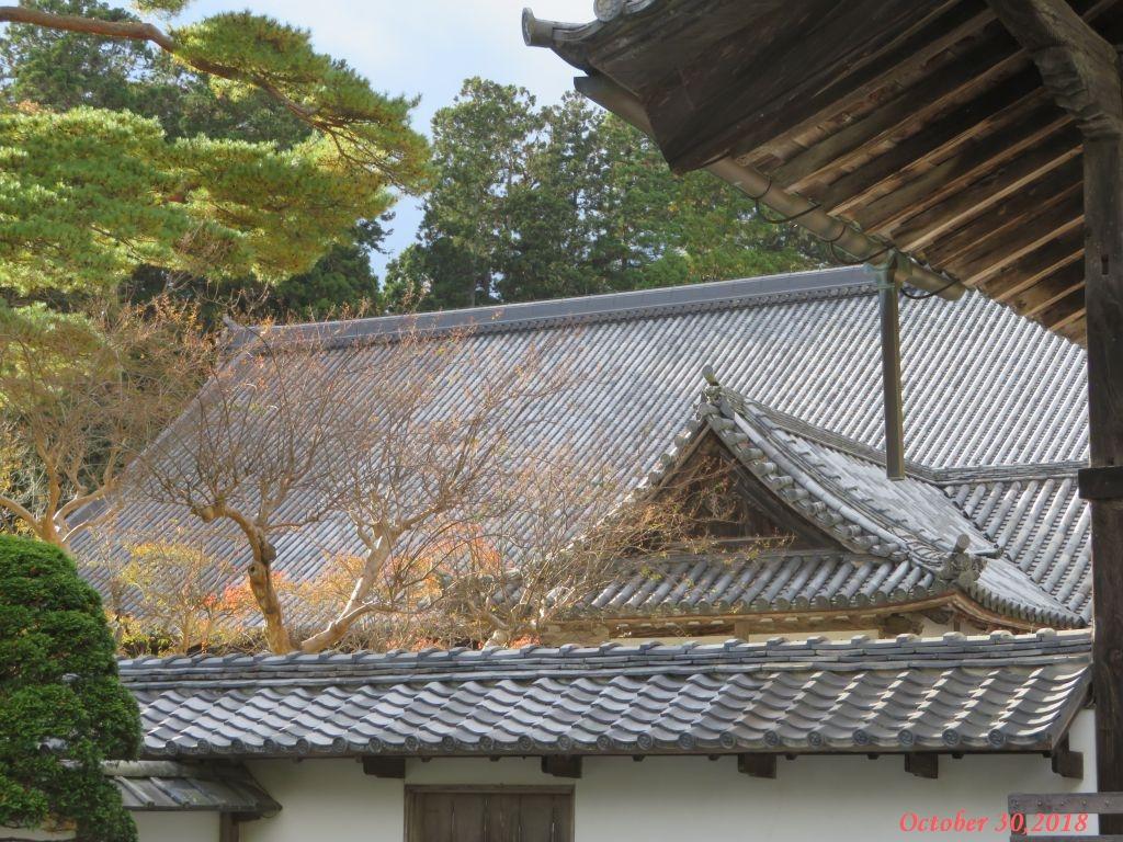 画像9(瑞巌寺)