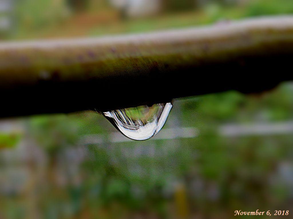 画像1(雨滴)