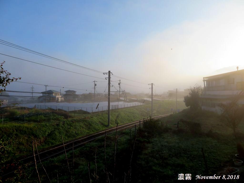 画像1(濃霧)