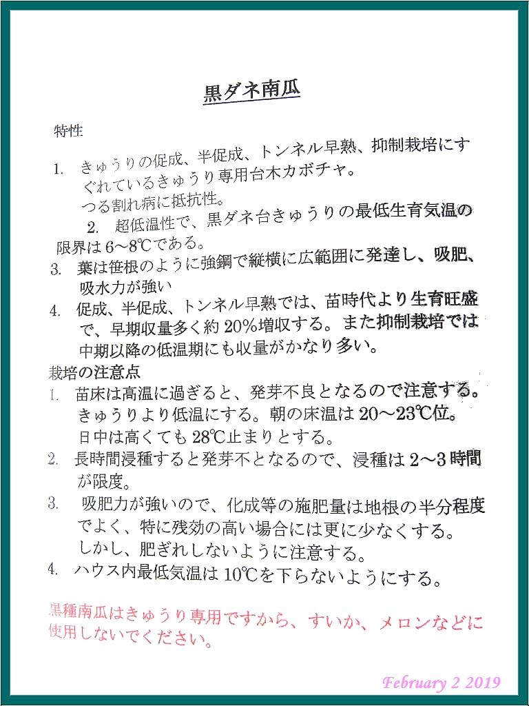画像4(台木用種「黒ダネ南瓜」)