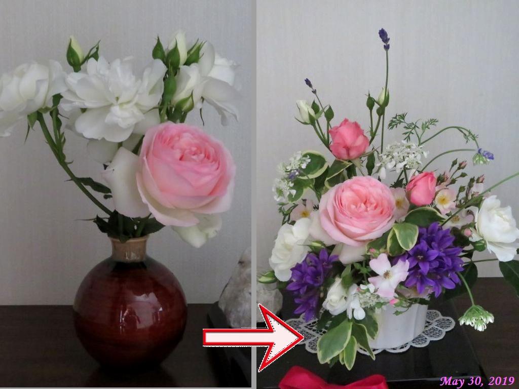 画像4(切り花)