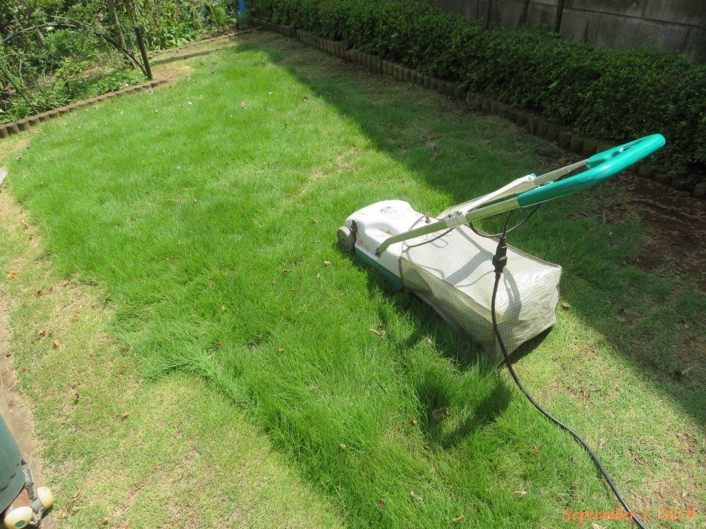 画像9(芝刈り)