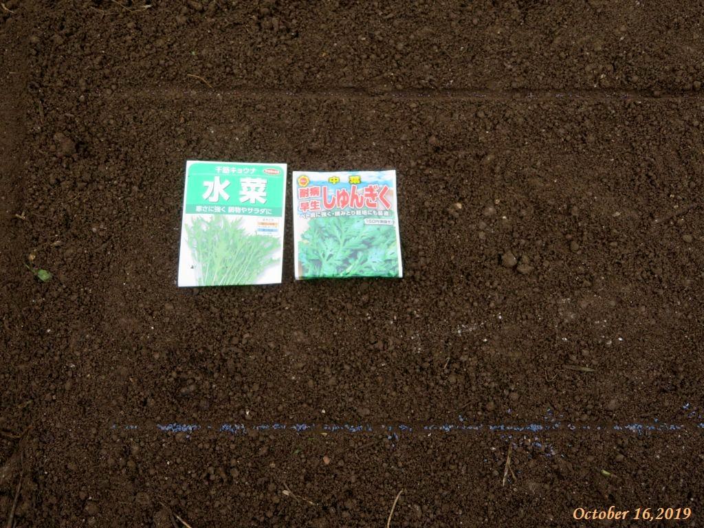 画像2(水菜と春菊の種袋)