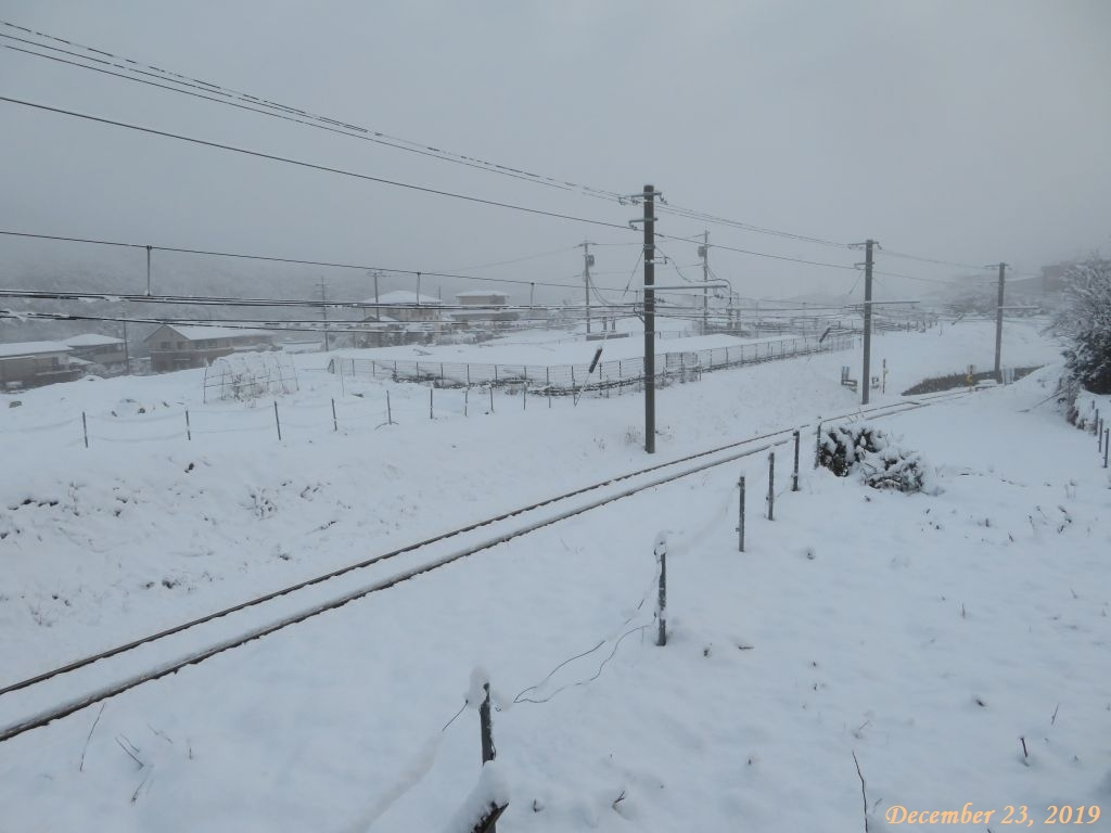 画像1(積雪16cm)