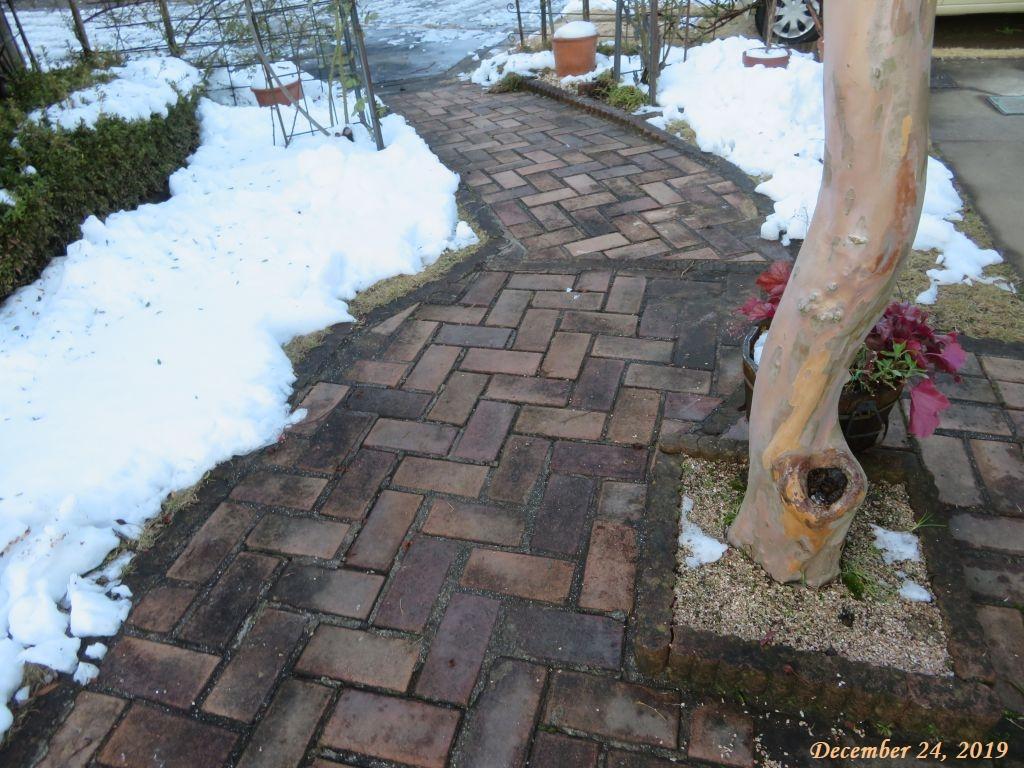 画像2(庭の雪)