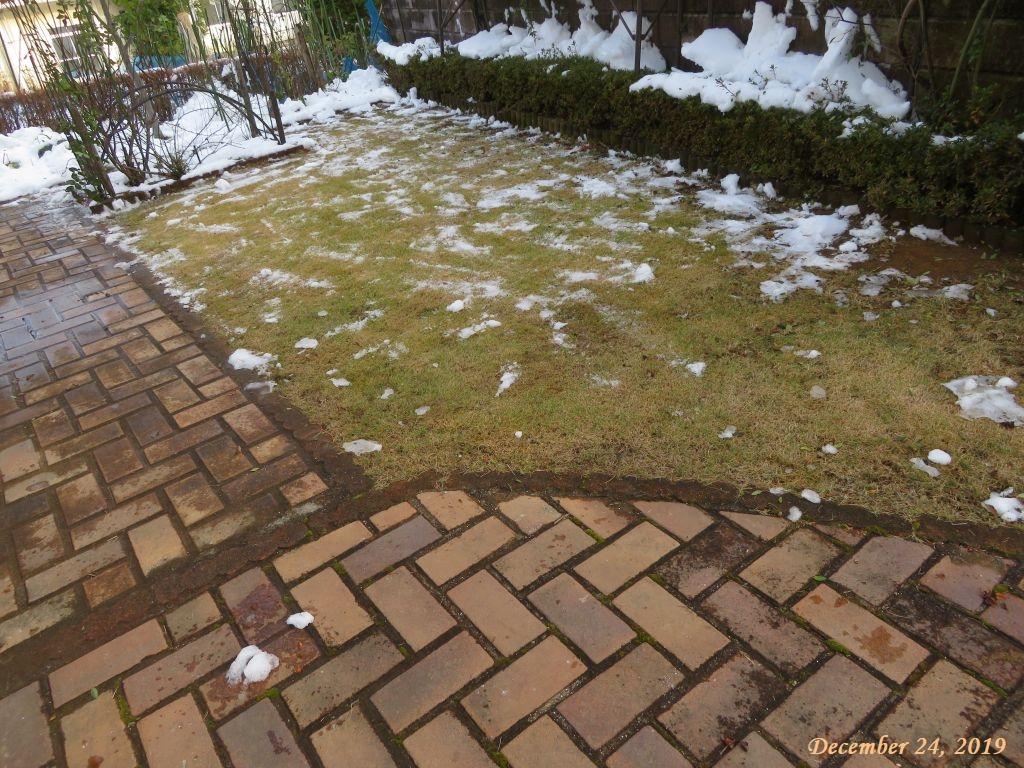 画像3(芝生の雪かき)