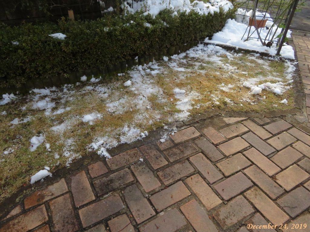 画像4(芝生の雪かき)