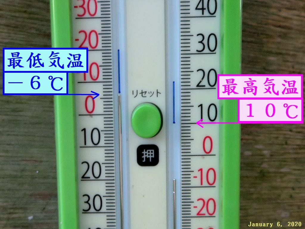 画像1(庭の温度計)