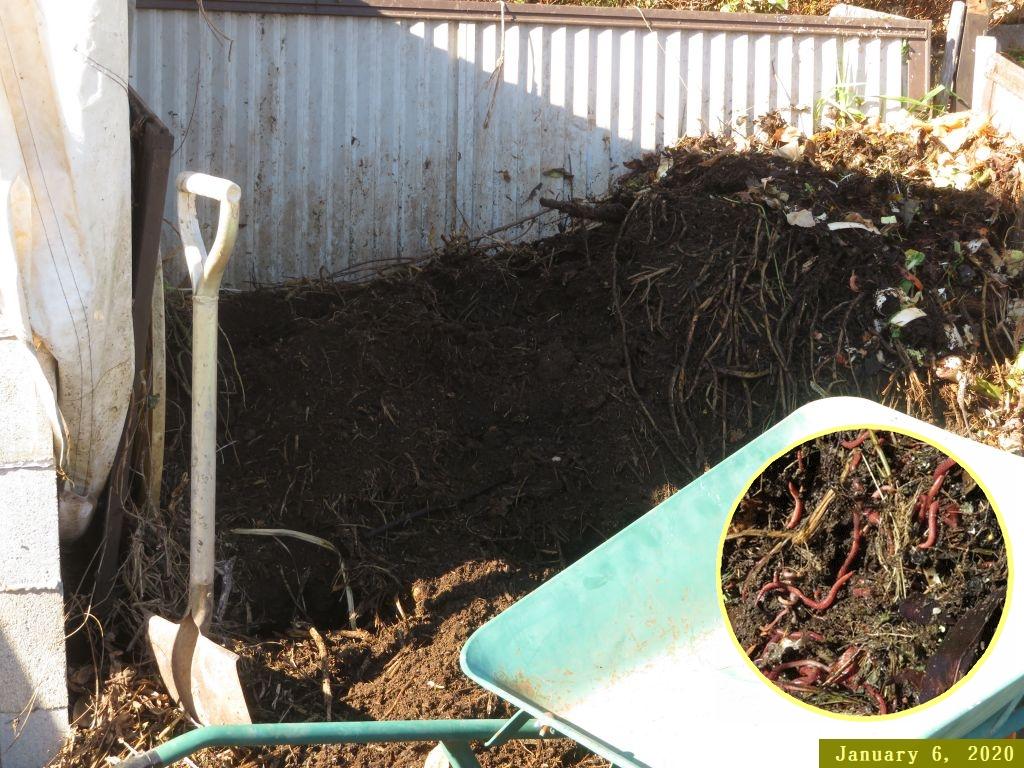 画像5(堆肥の運び出し)