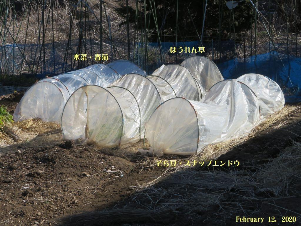 画像12(トンネル)