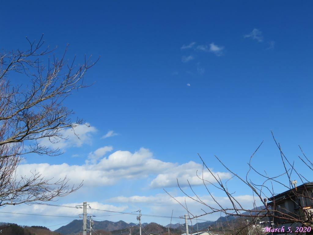 画像1(青空と月)