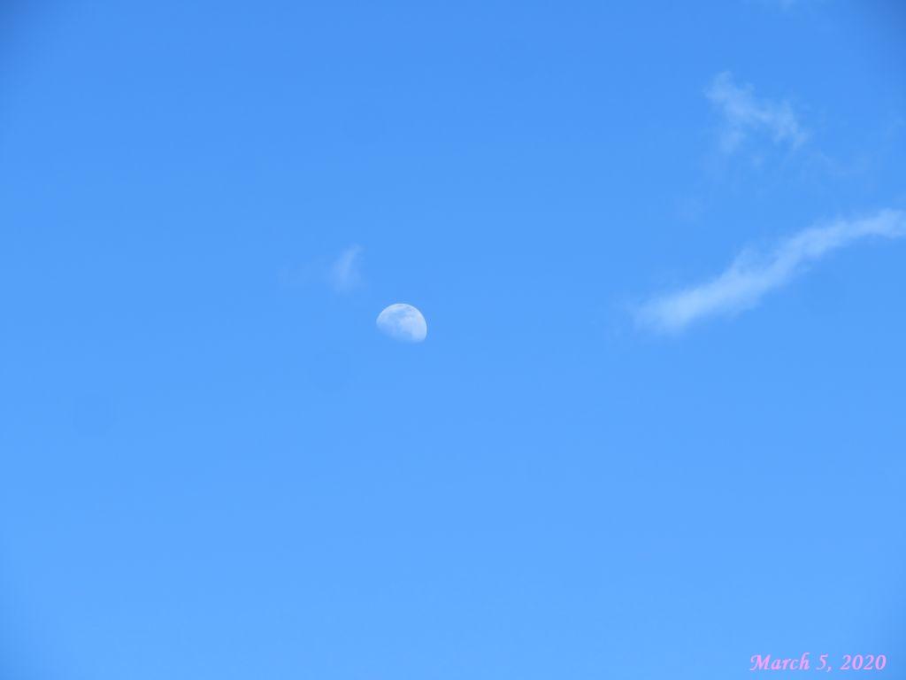 画像2(青空と月)