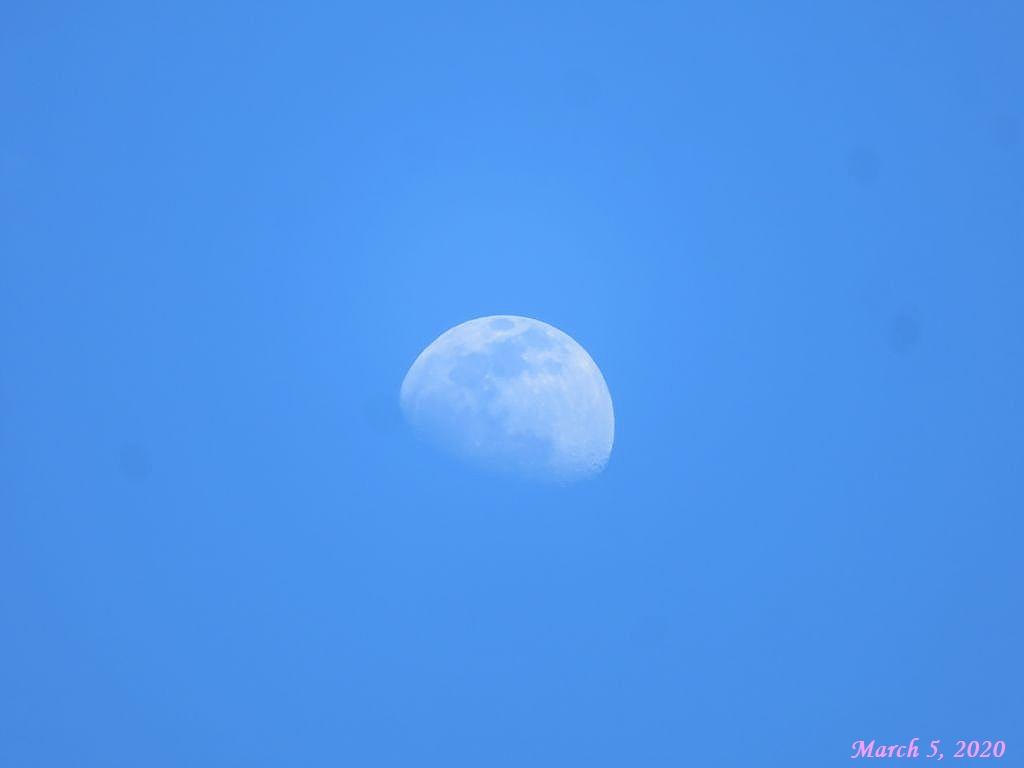 画像3(青空と月)