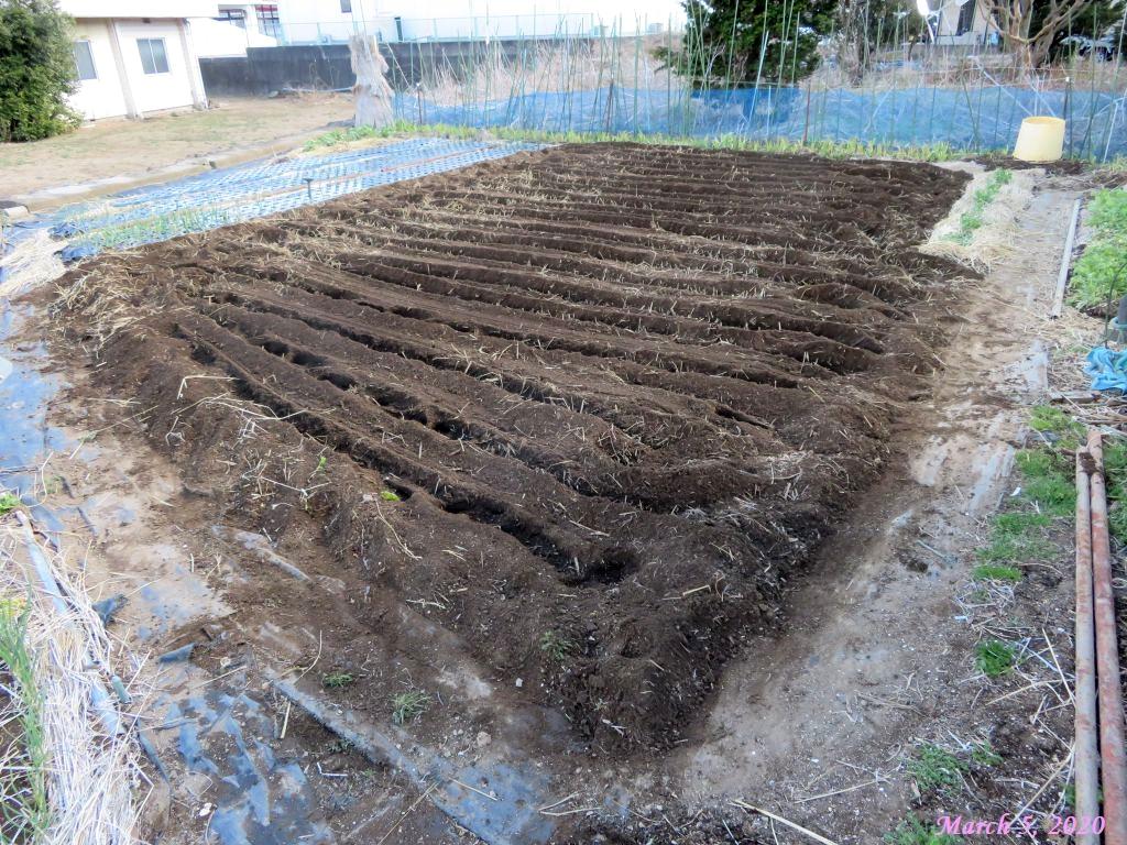 画像9(耕し終えた畑)