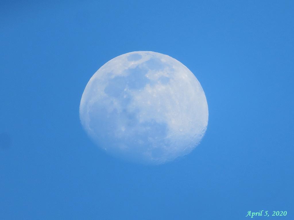 画像2(月)