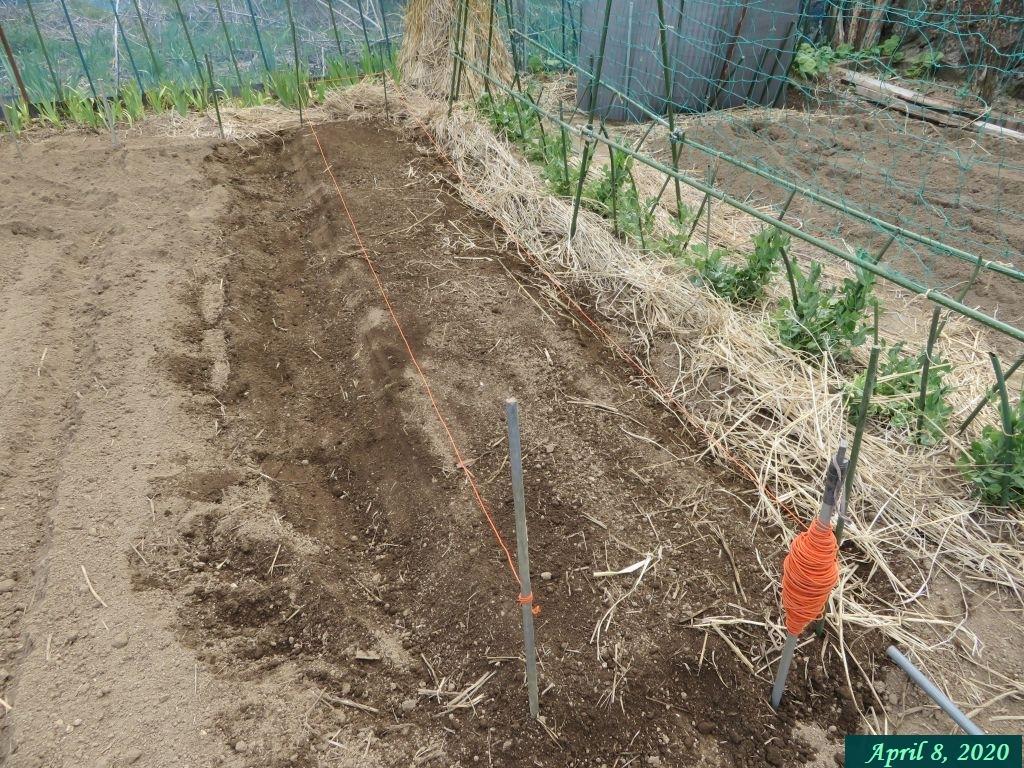 画像12(畝作り)