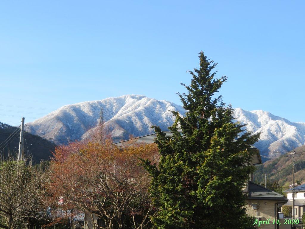 画像3(鹿留の山)