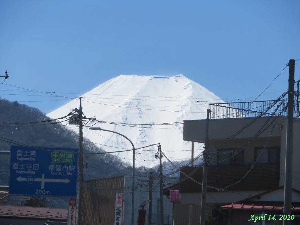 画像5(富士山)