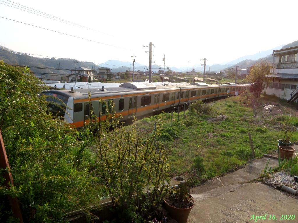 画像12(電車)