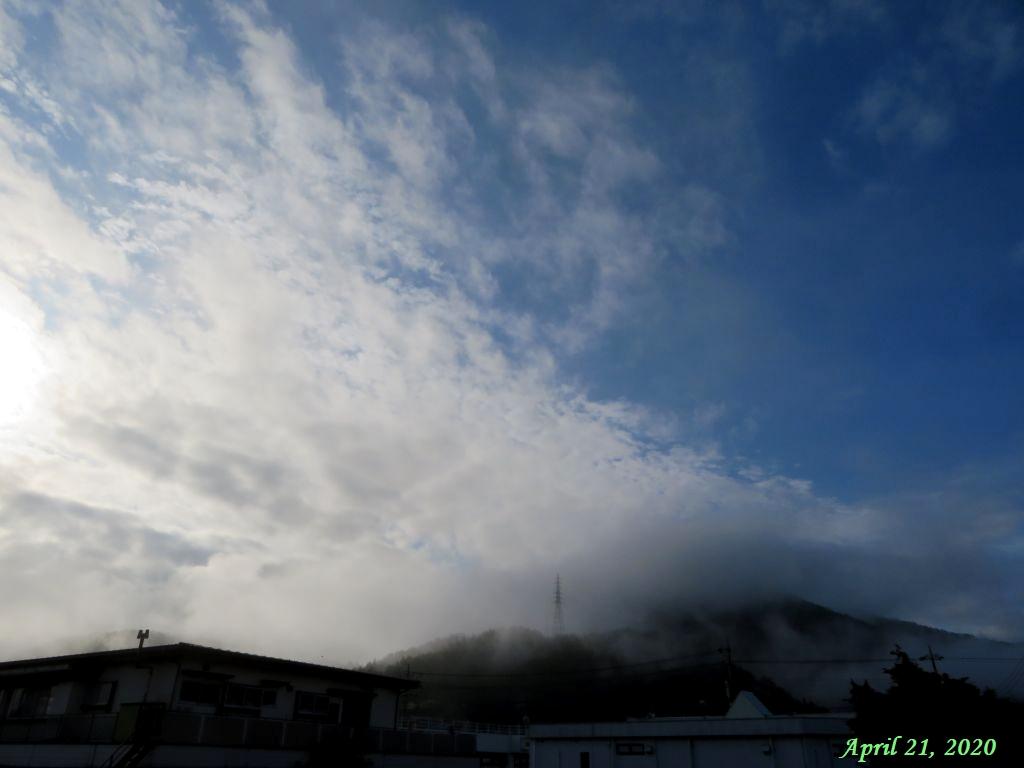 画像4(今朝の空)