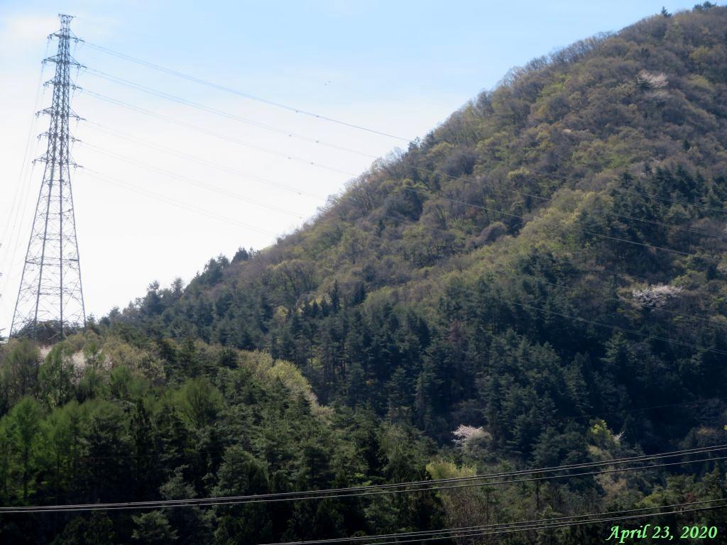 画像2(近くの山)