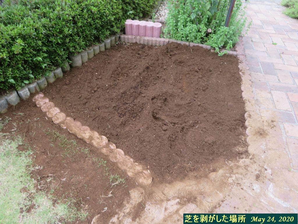 画像7(芝生剥がし完了)