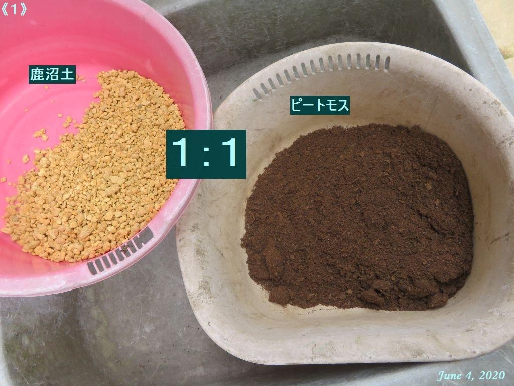 画像4(ピートモスと鹿沼土の比率)