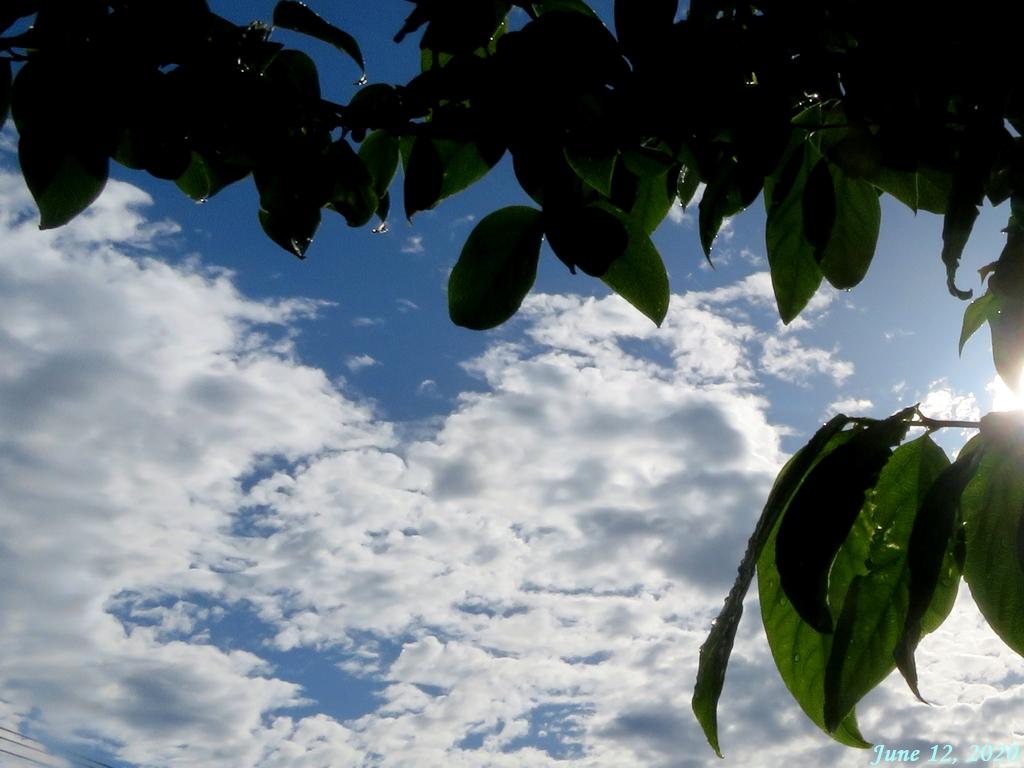画像5(今朝の空)