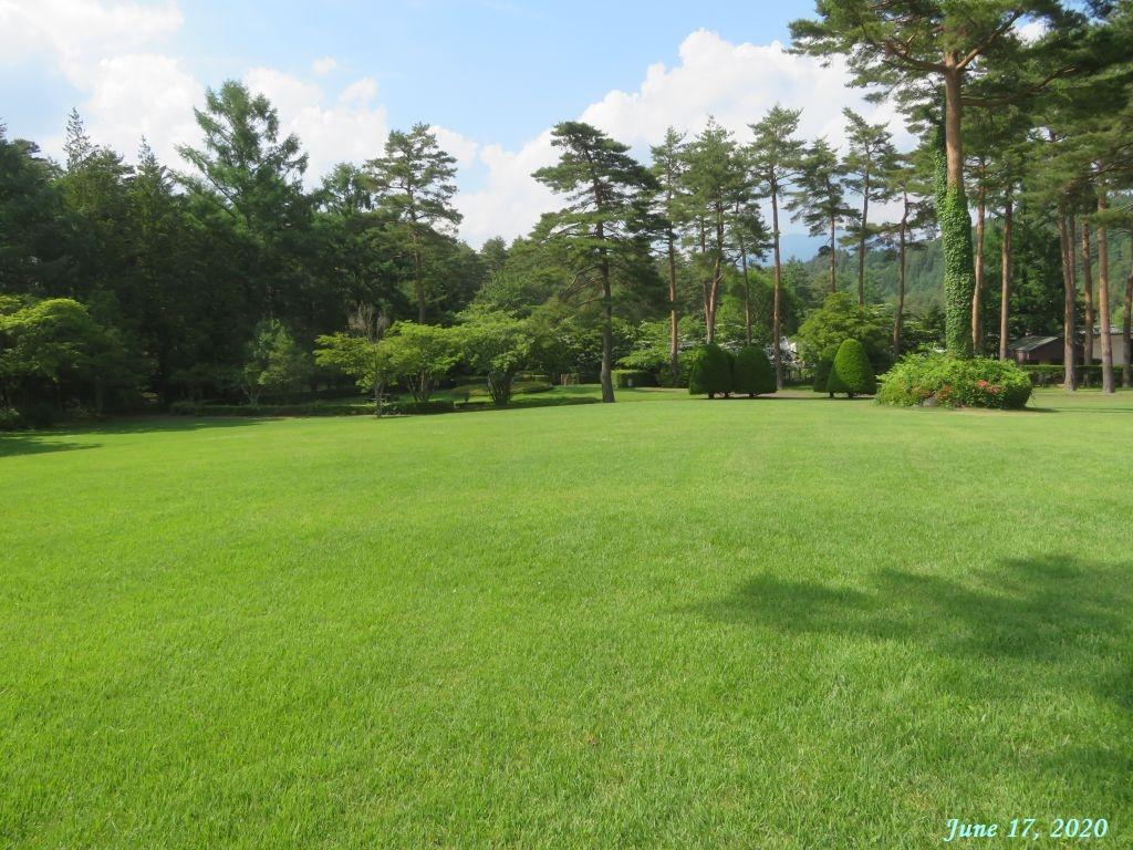 画像18(恩賜林庭園の芝生広場)