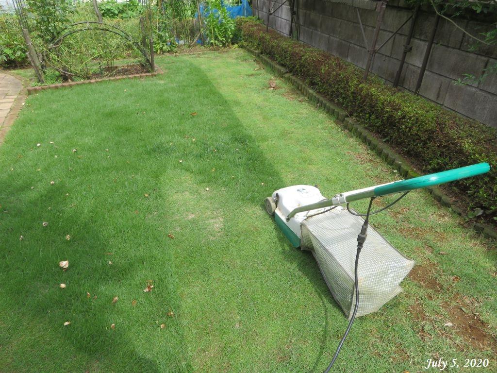 画像14(芝刈り)