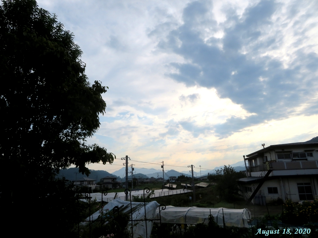 画像1(今朝の東の空)
