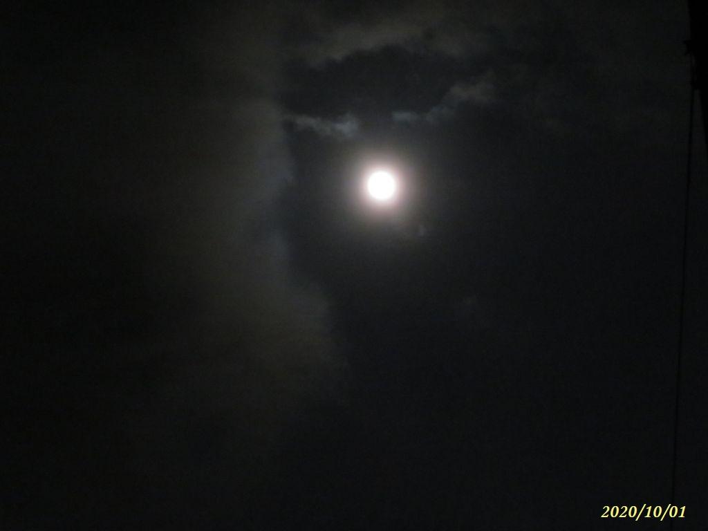 画像2(十五夜)