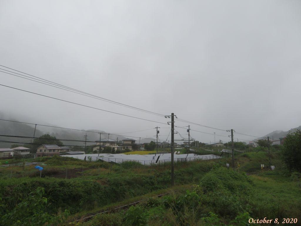 画像1(雨の朝)
