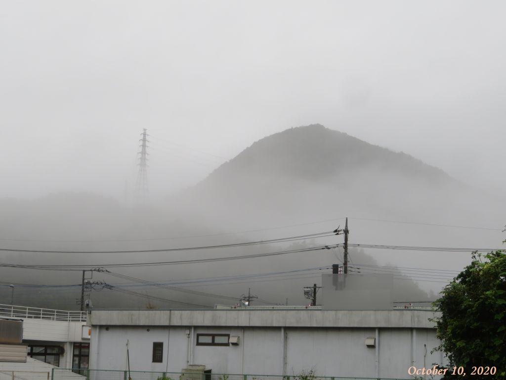 画像1(今朝の風景)