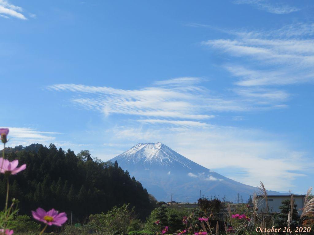 画像4(富士山)