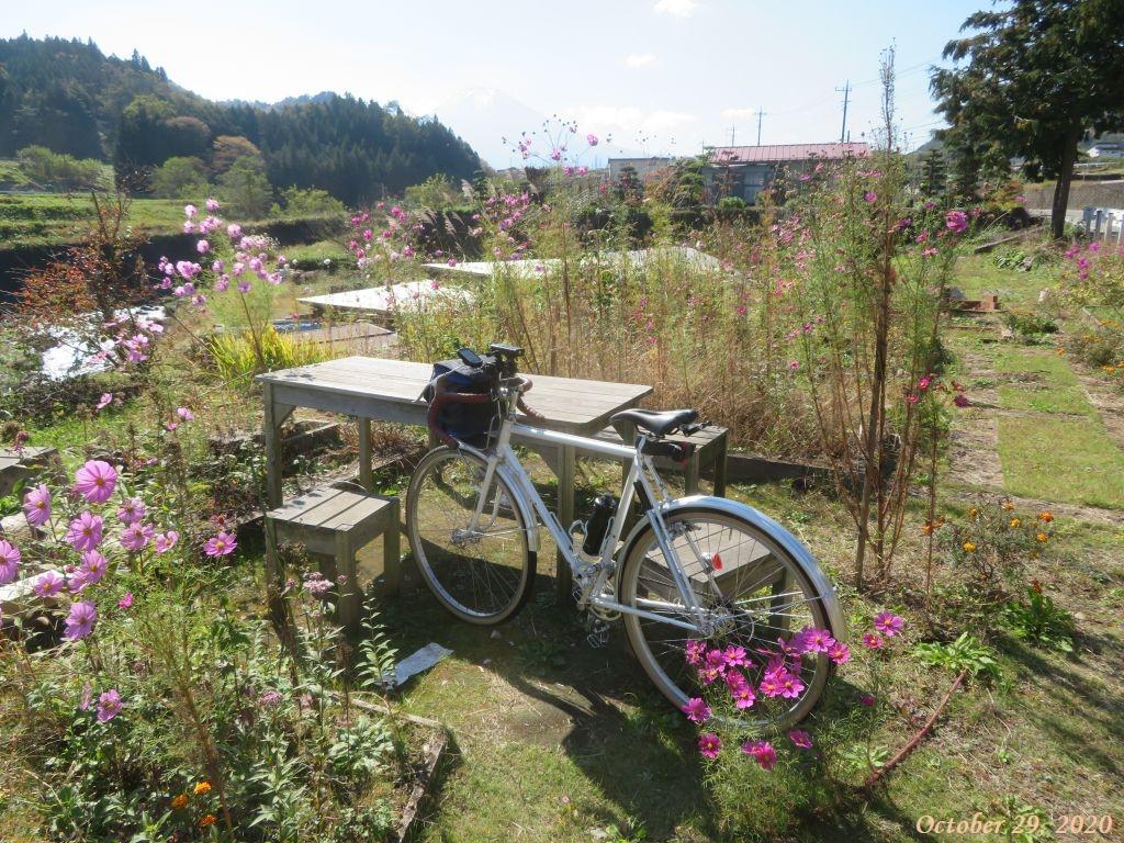 画像6(大池橋付近の公園)