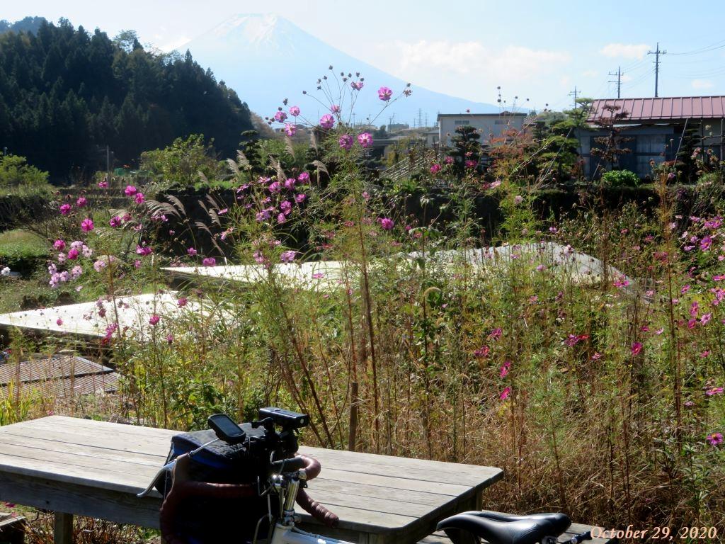 画像7(大池橋付近の公園)