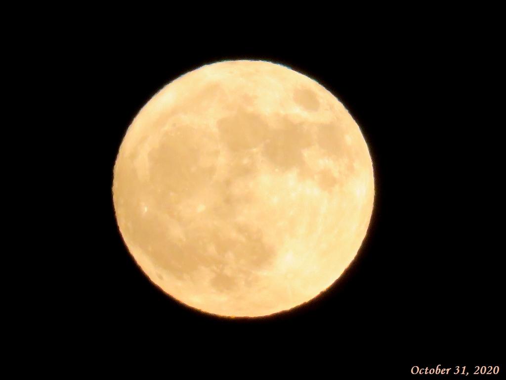 画像15(ブルームーン 満月)
