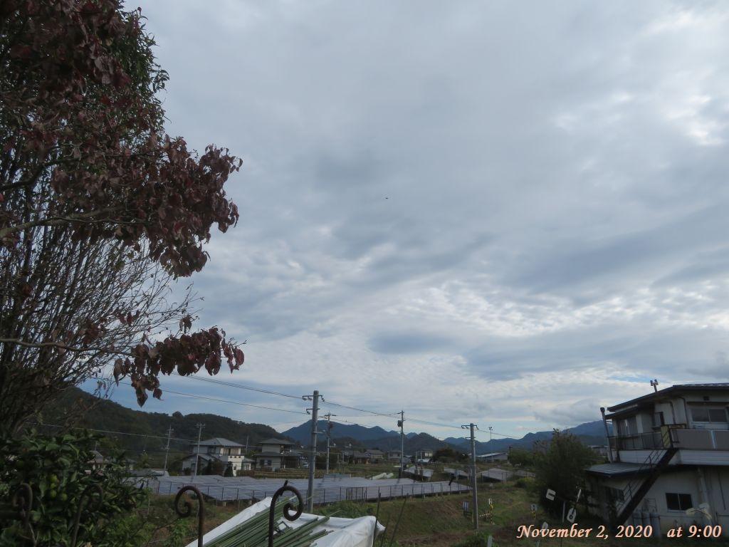 画像2(今朝9時の空)