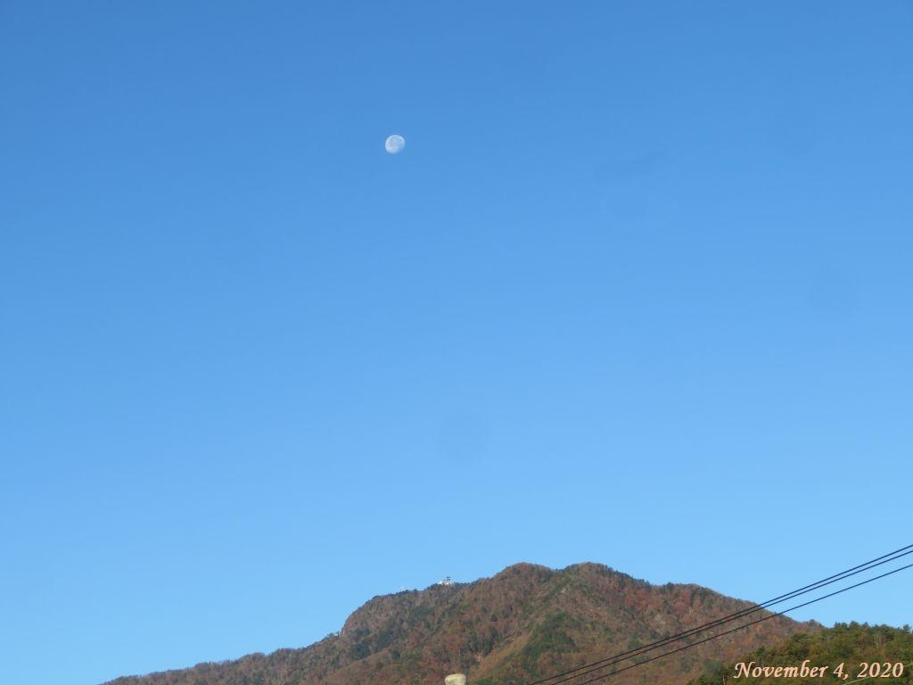 画像1(朝の白い月)